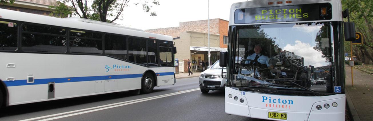 Picton Buslines bus